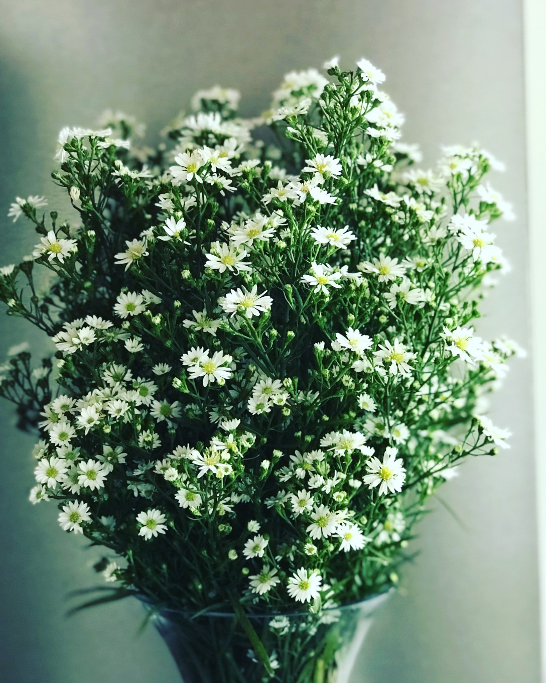 Buy A Beautiful Bunch Of Flowers For Someone Special